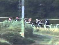 Corsa 6