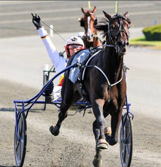 Zacon Gio e Roberto Vecchione vincitori nell'International Trot Usa