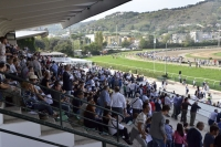 domenica 2, brunch e corse al trotto all'ippodromo